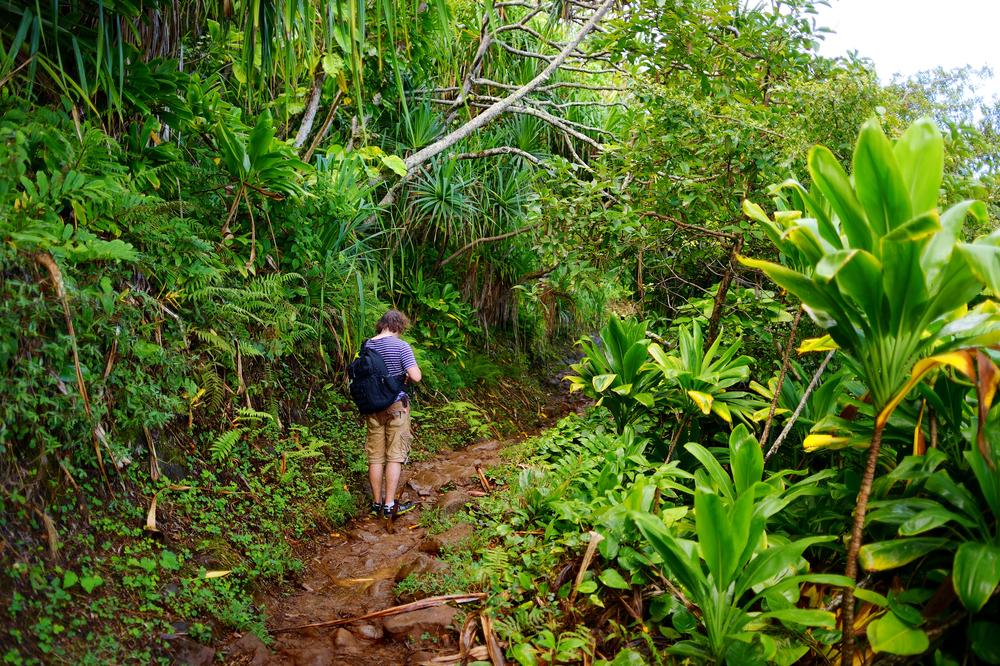 Young male tourist hiking on the famous Kalalau trail